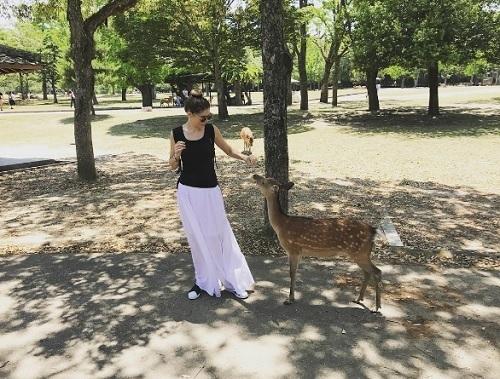 デロッシ奈良訪問01.jpg